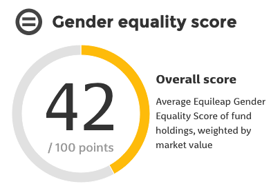 Gender Equality Funds score example